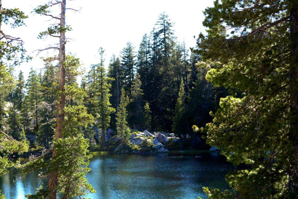 Fordyce Lake